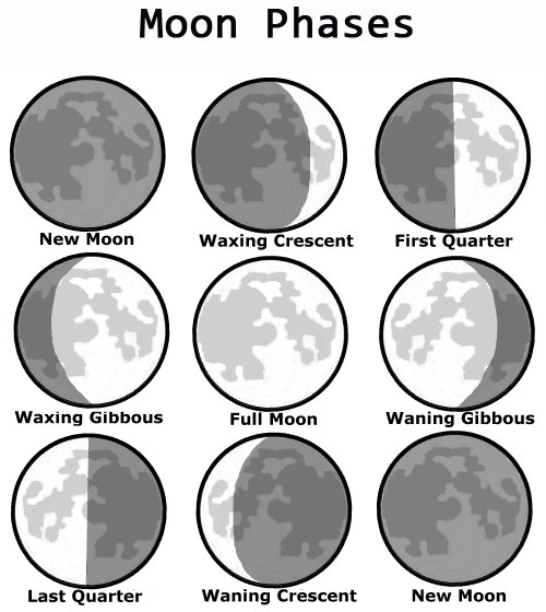 133 on Moon Phases Worksheet